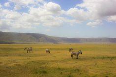 Ngorongoro, Tanzania / photo Marta Mróz
