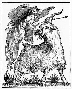 30 best got yer goat images hilarious funny animal funny animals Funny Baby Goats a pretty winged fairy visits a goat in this vintage drawing vintage drawing goats
