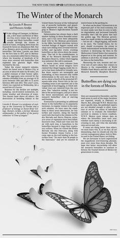 "New York Times ""The Winter of the Monarch"" by Eiko Ojala, via Behance"
