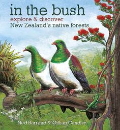 """Cover illustration from my new book """"In the Bush"""" which will be published in September by Potton & Burton. http://www.nedbarraud.com/"""