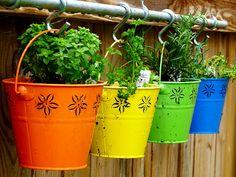 Colorful Painted Metal Bucket: Low-budget and Easy Container Ideas For Herb Garden Diy Herb Garden, Garden Plants, Verticle Garden, Outdoor Projects, Garden Projects, Garden Ideas, Hanging Herbs, My Pool, My Secret Garden
