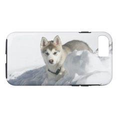 #Siberian Husky Puppy in snow iPhone 8/7 Case - #siberian #huskie #puppy #huskies #dog #dogs #pet #pets #cute