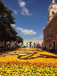 A flower carpet, shaped with Day of the Dead skeletons, in Atlixco, Puebla. Photo by Lesley Tellez
