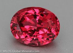 Top of The Line agl Certified Vibrant Red Spinel 10 Carat Oval Vietnam Rare Gemstones, Minerals And Gemstones, Rocks And Minerals, Natural Gemstones, Bijoux Tanzanite, Red Spinel, Mineral Stone, Rocks And Gems, Stones And Crystals