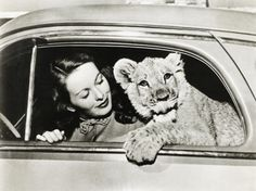 Classic Movie Stars with Their Pets