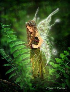 A beautiful fern fairy