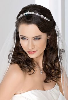 Bel Aire rhinestone tiara and crystal veil. Also love the way that it goes around her hair do