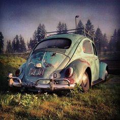 Volkswagen Fusca/Beetle