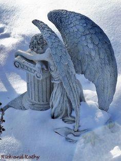 Beautiful sculpted wings ~