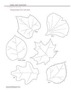 Image detail for -Leaf Templates - PDF