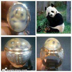 Pic Agate. Panda