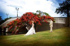 For an unforgettable wedding, Links Hope Island boasts a stunning variety of options when it comes to planning your special day. Wedding Venues Gold Coast, Wedding Events, Wedding Ceremony, Reception, Weddings, Tweed Wedding, Wedding Function, Princess Wedding, Gazebo