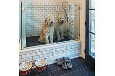 dog-shower-21.jpg (620×413)