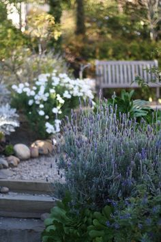 Beautiful cottage garden with lavender and seating bench. Perfect for unwinding in My Secret Garden, Garden Spaces, Dream Garden, Garden Inspiration, Beautiful Gardens, Garden Landscaping, Outdoor Gardens, Outdoor Rooms, Garden Design