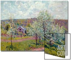 Spring in the Environs of Paris, Apple Blossom, 1879 Art on Acrylic by Alfred Sisley at Art.com