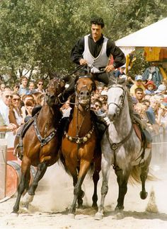 Ben Hur had nothing on Hungarian cowboys. He is riding 3 horses at a time - standing up! Many seasoned Hungarian cowboys ride 5 horses at a time. Feet on the back two, three horses in front. Trick Riding, Central Europe, Budapest Hungary, Horse Love, Eastern Europe, Horse Riding, People Around The World, Pet Birds, Folk Art