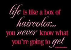 Box color/salon  humor