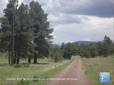 Gorgeous views of the pines and San Francisco peaks on the trails at Fort Tuthill Park in Flagstaff #Arizona #nature