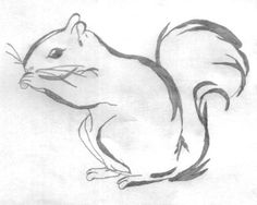 line drawing squirrel Animal Sketches Easy, Animal Line Drawings, Simple Line Drawings, Easy Drawings, Squirrel Tattoo, Squirrel Art, Cute Squirrel, Squirrels, Art Drawings Sketches
