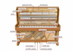 upright-piano-diagram.jpg 550×384 pixels