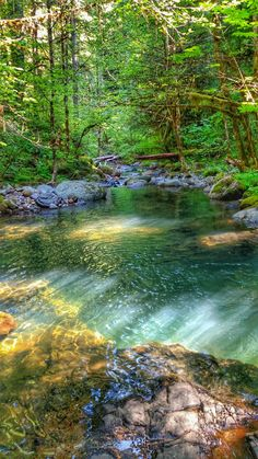 Willamette National Forest, Oregon