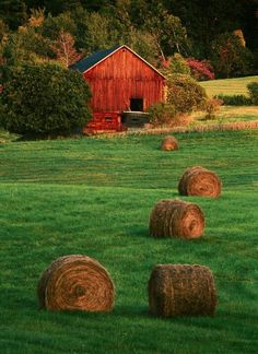 Barn & Hay Bales - Country Living Peaceful and Gorgeous Country Barns, Country Life, Country Living, Country Roads, Country Style, Barn Pictures, Great Pictures, Farm Barn, Old Farm
