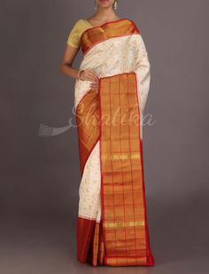 Navya Trendy Design Broad Border #Ikat #PatolaSilkSaree