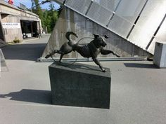 Dog statue in front of oldest ski museum in the world. (Oslo, Norway)