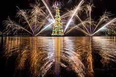 Not only is this 279ft #ChristmasTree in Rio spectacular, but it floats