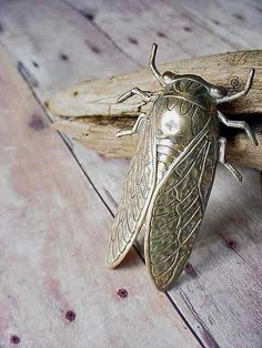 Gold Brooch Cicada Unusual Insect Bug Wings by MySelvagedLife on Etsy.  I don't like bugs, but this is so perfect that I would enjoy putting it on my lapels and wearing to rave revues!
