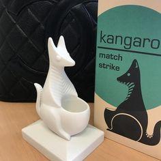 Image result for animal match strike