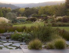 GARDENART GROUP | Home | Garden Design San Francisco Bay Area, CA | Landscape Architect & Landscape Management