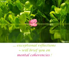 ... exceptional #reflections ~ will brief you on mental #coherencies !
