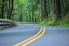 Road Narrows!  Taken on Historic Columbia River Highway, between Bridal Veil and Multnomah Falls.