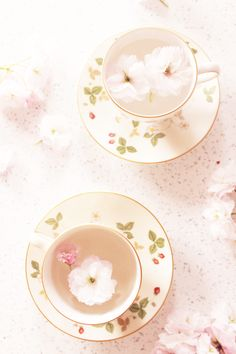 JUST MY CUP OF TEA » parisbyfriday.com | #photography