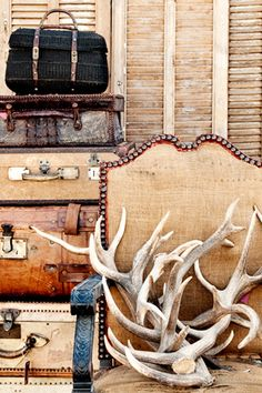 8 Great Things To Do In Chicago This Fall : Jayson Home Fall Flea Market : via #refinery29