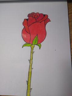Pencil drawing red rose🌹 Pencil Drawings, My Drawings, Red Roses, Drawing S, Pencil Art