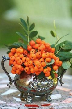 orangenfarbene Beeren in einer Vintage Teekanne (Cool Halloween Art) – Central Deco Floral, Arte Floral, Autumn Inspiration, Fall Halloween, Tablescapes, Floral Arrangements, Beautiful Flowers, Berries, Vintage Silver