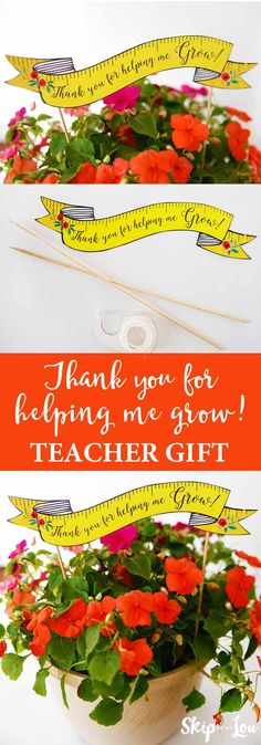 "Teacher appreciation gift idea! Free printable ""thank you for helping me grow"" banner to pair with flowers."