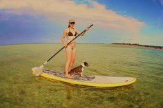Stand up paddle board with dog | And a progress shot of my backyarder And while we're on them- mates ...