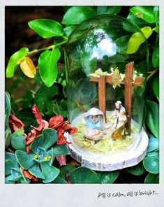 Christmas morning, much love to all. Woodland Forest, Christmas Morning, Natural World, Make You Smile, Snow Globes, Make It Yourself, Design
