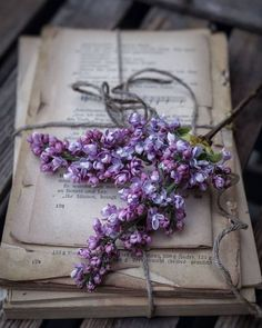 What are you doing on a rainy and gray monday like today? I want to read a book 📖🧁☕ . Lavender Aesthetic, Flower Aesthetic, Purple Aesthetic, Witch Aesthetic, Book Aesthetic, Aesthetic Vintage, Flower Wallpaper, Wallpaper Backgrounds, Book Flowers