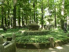 Center of paths in Senefelder Friedhof in Berlin