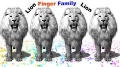White lions vs farm animals finger family rhymes for kids ll learn color...