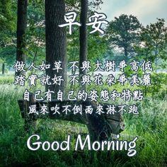 Good Morning Greetings, Morning Wish, My Way, Morning Quotes, Prints