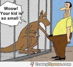 Funny dirty joke, Kangaroo in the zoo, your kid is so small.