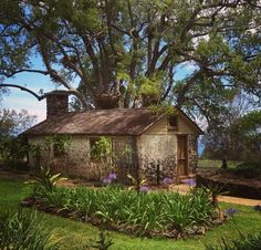 On the slopes of Mount Haleakala sits an old, single-room stone cottage once used as a jail. However, it is what you will find there today that will truly enchant you.