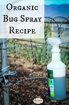 Organic Bug Spray Recipe - easy, all natural, and inexpensive! Make it at home in no time at all.:
