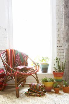 Plafonds Interior Design mexicains espèces idées de décoration de chat rayé de couleur