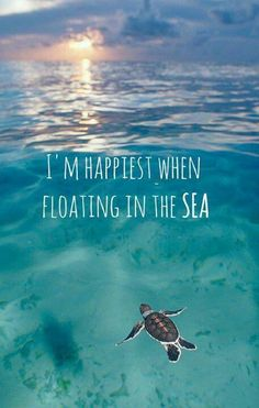 I´m happiest when floating in the sea